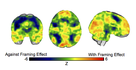 Brain activity when people make choices consistent with (hot colors) or against (cool colors) the Framing Effect.