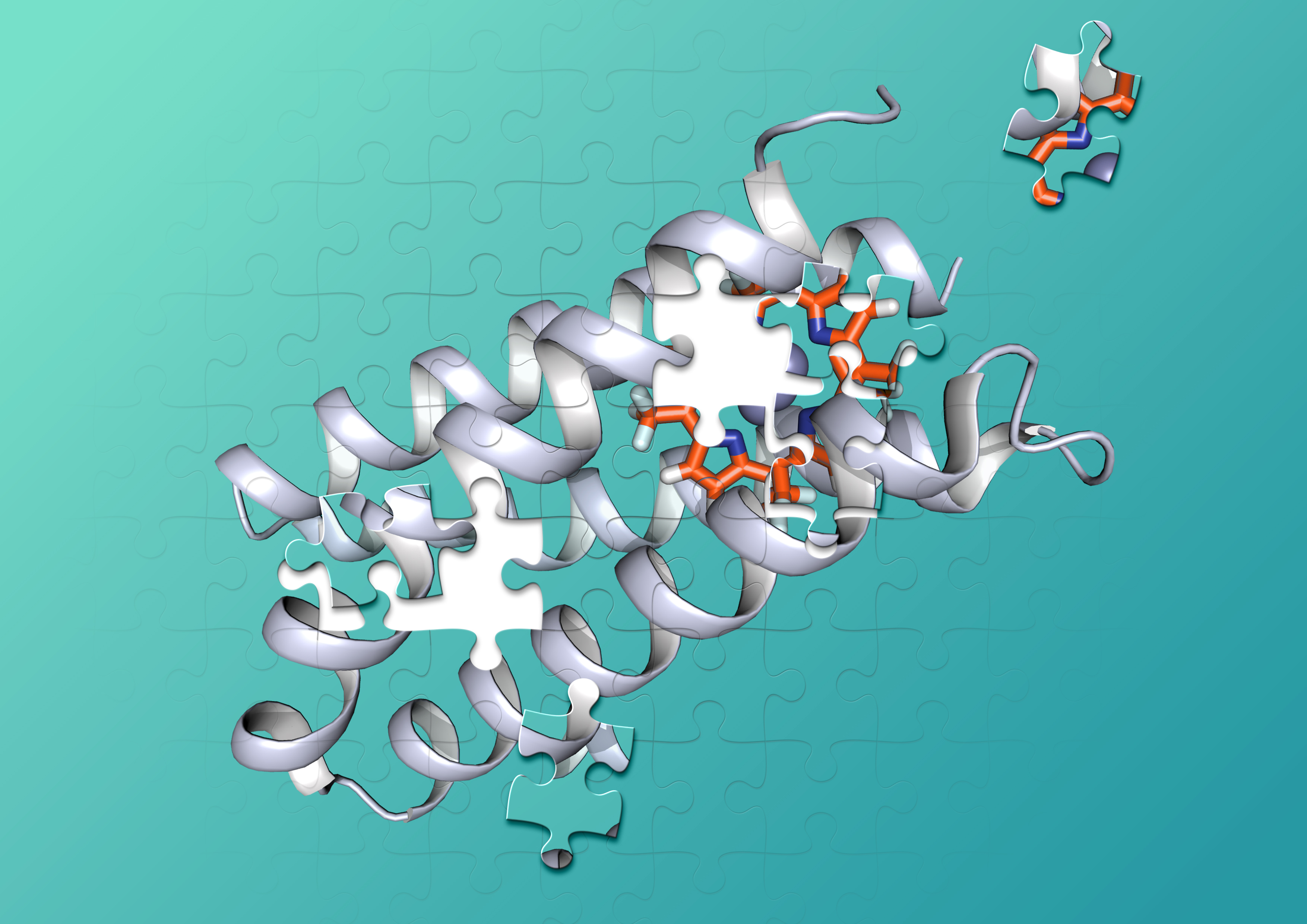 An illustration of a protein jigsaw puzzle