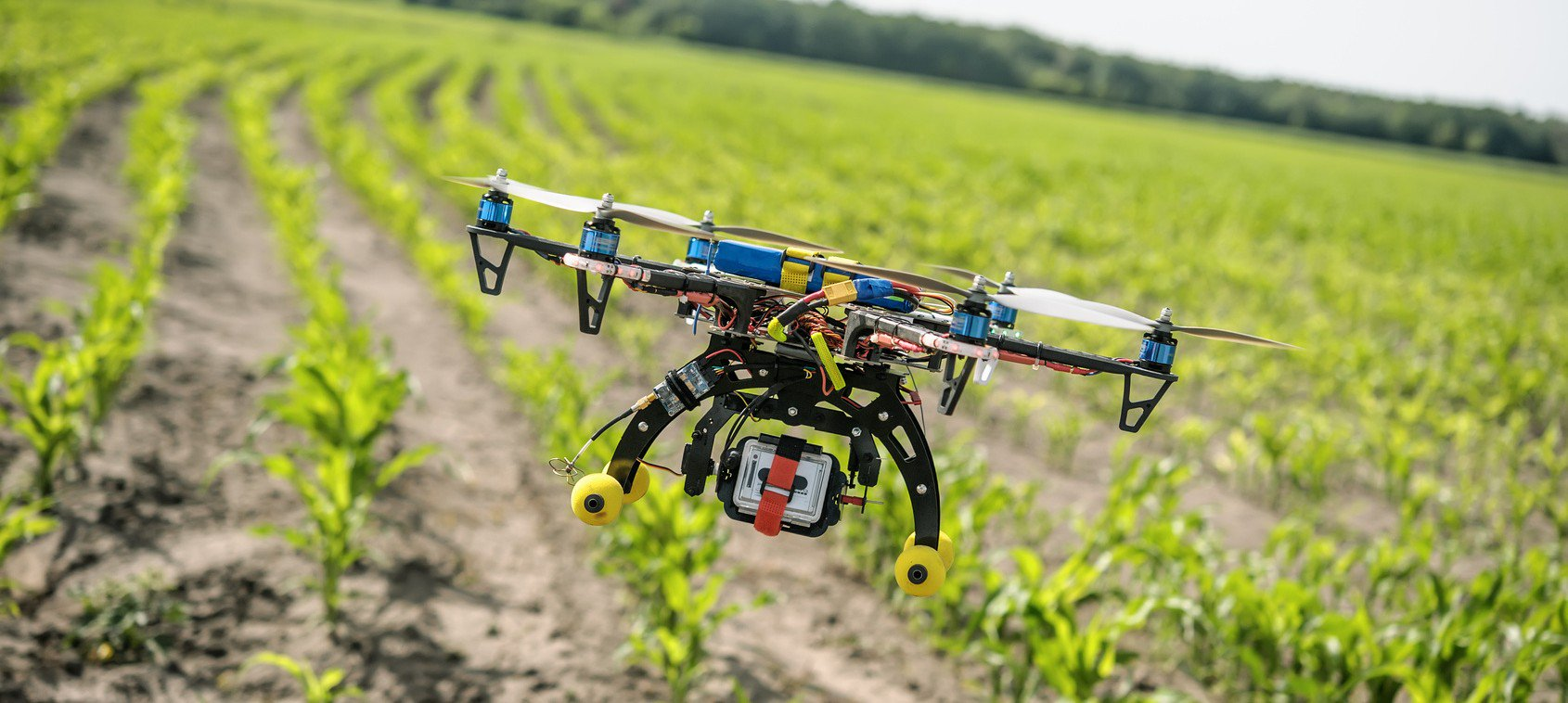 A drone flying over an agricultural field
