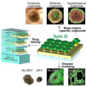 Bioreactor schematic